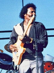 Photo of Albert Collins