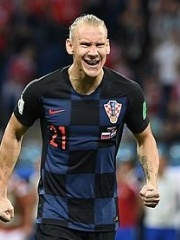 Photo of Domagoj Vida