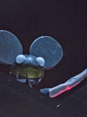 Photo of Deadmau5