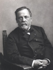 Photo of Louis Pasteur
