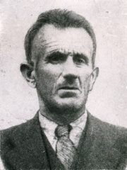 Photo of Muhamed Mehmedbašić