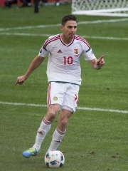 Photo of Zoltán Gera