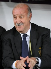 Photo of Vicente del Bosque