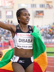 Photo of Tirunesh Dibaba