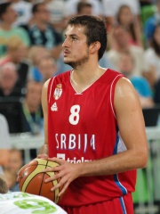 Photo of Nemanja Bjelica