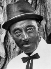 Photo of Mississippi Fred McDowell