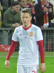 Photo of Ander Herrera
