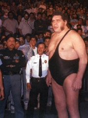 Photo of André the Giant