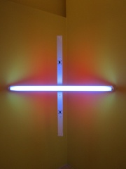 Photo of Dan Flavin