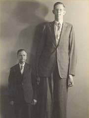 Photo of Robert Wadlow