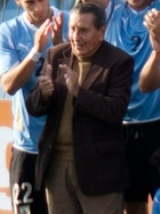 Photo of Alcides Ghiggia
