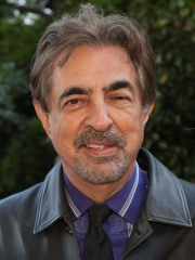 Photo of Joe Mantegna
