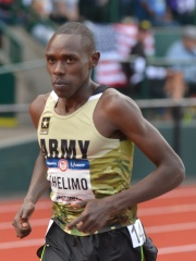 Photo of Paul Chelimo