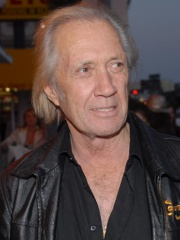 Photo of David Carradine
