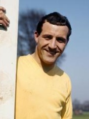 Photo of Ron Springett