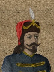 Photo of Mutimir of Serbia