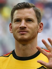Photo of Jan Vertonghen