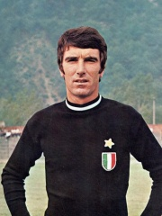 Photo of Dino Zoff